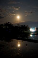 幻想的な春の月夜
